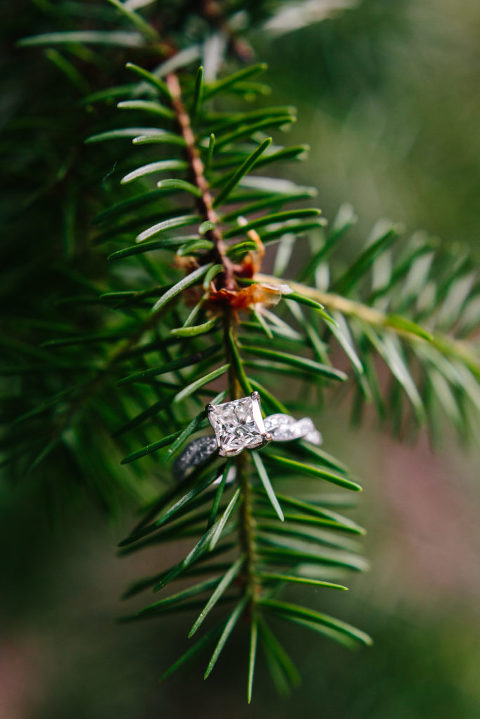 Morrison engagement session, Mount Falcon Park Engagement session, Engagement Ring photo, Engagement ring on tree